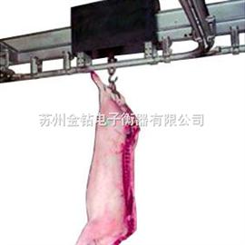 SIS-2電子牲畜秤.屠宰場專用牲畜秤,流水線電子秤,秤動物專用電子秤
