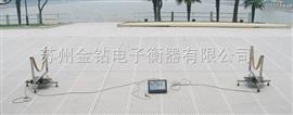 SCS-2赛艇秤,秤轮船用电子秤,皮划艇电子秤,专用汽渡电子秤