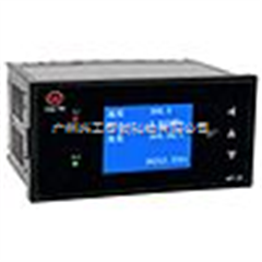 WP-LN802-02-FAG-HL-2P可编程天然气流量积算仪