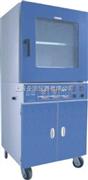 生物专用DZF-6030B型真空干燥箱(微电脑带定时)