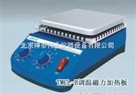 HWCL-B磁力攪拌器