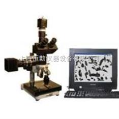 图像金相显微镜
