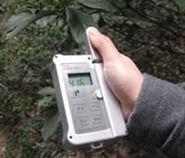 叶绿素测定仪 叶绿素检测仪