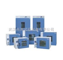 DGG-9626A干燥循环烘箱