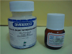 2-丙烯酰氨基-2-甲基丙烷磺酸