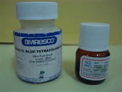4-(N-乙基-N-氨基丁基氨基)鄰苯二甲酰肼
