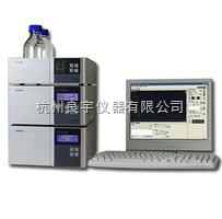 LC-100PLUS等度系统液相色谱仪图片