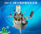 促销GSA-0.3磁力搅拌微型反应器