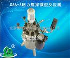 GSA-3磁力搅拌微型反应器大连