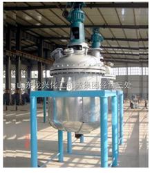 500L-莱州零距离电加热反应釜