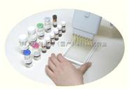 Caki-2(人腎透明細胞癌細胞)