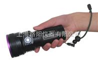 luyor-365A美國路陽清潔驗證檢查燈