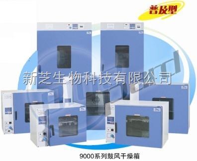 上海一恒鼓风干燥箱DHG-9140