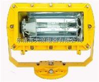 分体式防爆泛光灯  BFC8100-J400W