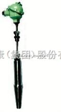 WRN-0313T爐頂熱電偶(阻) 天康集團