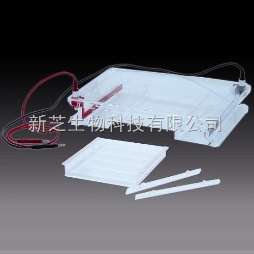 北京六一琼脂糖水平电泳槽DYCP-31F/水平电泳槽/编号:122–3160现货销售