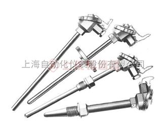 WZPN-430耐腐型耐磨型热电阻