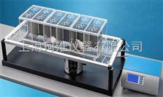 ZH-200热刺痛仪(单只/三只大鼠)