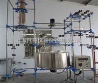 PRG-200玻璃反应釜