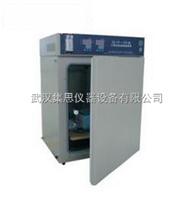 ZY/HH.CP-01W二氧化碳培养箱