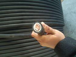 JBHF高压电机引接电缆,JBF/6KV