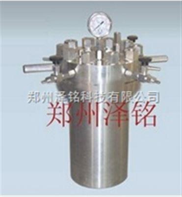 CF-10-250化工厂可定制不锈钢简易反应釜/高压反应釜*