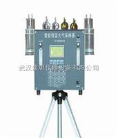 WH10-TH-3000BⅣ便携式恒温大气采样器