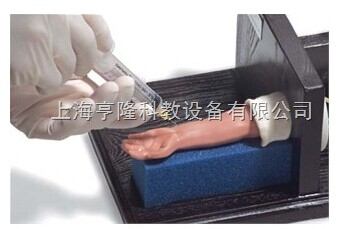 婴儿动脉注射模型
