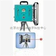 大气采样器 有害气体采样器 双路连续可调式大气采样器