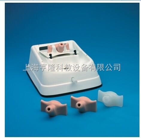 新宫腔镜诊断训练模型