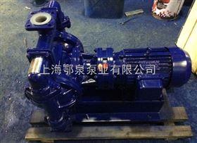 衬氟电动隔膜泵,DBY型电动隔膜泵