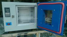 YD-125東莞鼓風干燥智能機/自動控制小型烘干箱/實用工業烤箱