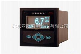 DP-2028B溶解氧測定儀/工業溶氧儀/在線式溶解氧測定儀