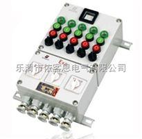 BXK-8030BXK-8030-A12D6B6K6G防爆控制箱,BXK-8030防爆控制箱按钮箱厂家