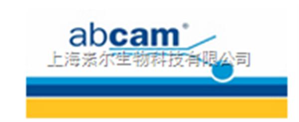 Abcam公司Rabbit polyclonal to SP3抗体(货号: ab72594)