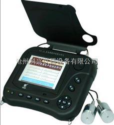 NM-4A型NM-4A非金属超声检测分析仪依据规范