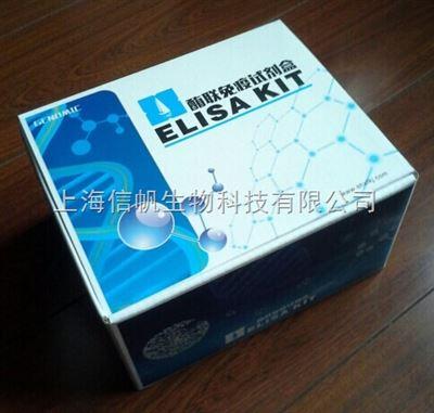 兔血管紧张素2(ANG-2)ELISA试剂盒
