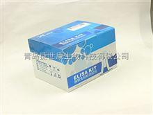 48T/96T牛氧化酶(oxidase)elisa试剂盒