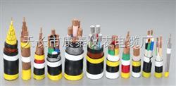 低烟无卤阻燃电缆WDZ-YJY