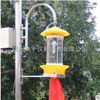 TY-TSCD02太阳能频振式杀虫灯