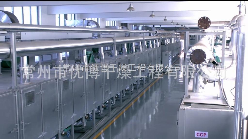 DW3-1.2-8蕉片带式干燥机