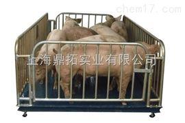 SCS上海3吨动物体重称,松江3吨动物电子秤