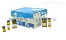48T/96T大鼠细小病毒H-1株(MVM-H-1)elisa试剂盒|科研用