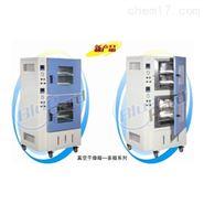 上海一恒多箱真空干燥箱BPZ-6090-2B