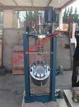 WHFSZ-1L不銹鋼反應釜生產廠家