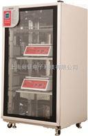 电热CO2恒温培养箱