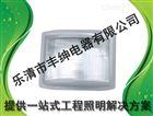 GT301-L150/GT301-L100/GT301-L70丰绅防水防尘防震防眩灯