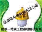 银川GC203防眩泛光灯 丰绅 壁式防水防尘防震防眩灯