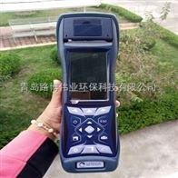 电厂烟气检测设备意大利斯尔顿C500便携式烟气分析仪