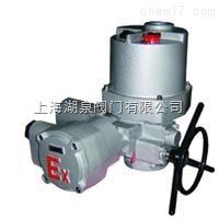 整體防爆電動裝置DQW10-1EB
